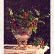 Holly & Berries — Stock Photo