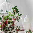 Holly & Berries Birdcage — 图库照片