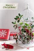 Holiday Birdcage — Stock Photo