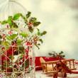 Christmas Birdcage — Stock Photo