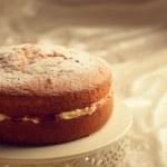 Victoria Sponge Cake — Stock Photo #41380345