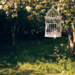ストック写真: Birdcage In Orchard