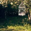 Stock Photo: Birdcage In Orchard