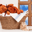 Laundry With Teddy — Stock Photo #41599931