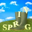 Stock Photo: Spring Wellies