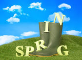 Spring Wellies — Stock Photo