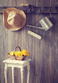 The Potting Shed — Stock Photo