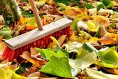 Sweeping leaves — Stock Photo