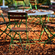 Beer garden in fall — Stock Photo #14801461