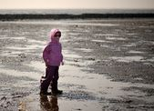 In the Mudflat — Stock Photo