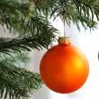 Stock Photo: Orange Christmas bauble on branch