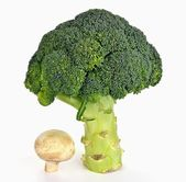 Broccoli and mushroom — Stock Photo