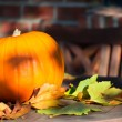 Pumpkin — Stock Photo #34391573
