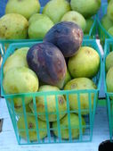 Fresh FIgs — Stockfoto