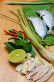 Thai Herb Spicy Soup — Foto Stock
