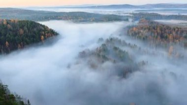 Fog over the river. Autumn landscape. — Wideo stockowe