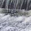The rapid waterfall. — Stock Video