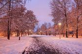 Sneeuw bedekte alley — Stockfoto