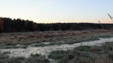 Dawn over the frozen swamp. Zoom. Time Lapse — Stock Video