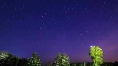 Stars — Stok video