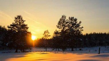 夕日と星 — ストックビデオ