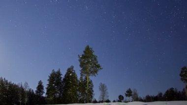 Estrellas en el cielo de invierno — Vídeo de Stock
