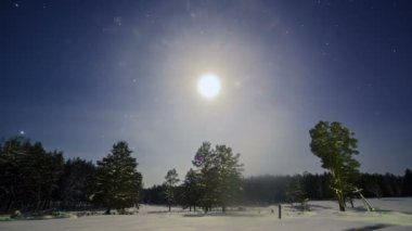 Moonlight in winter sky — Stockvideo