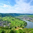 Stock Photo: Mosel Germany