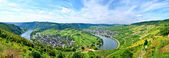 Mosel Germany — Stock Photo