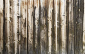 Wooden background — Photo