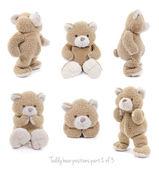 Reeks teddybeer posities — Stockfoto