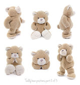 Set of teddy bear positions — Stok fotoğraf