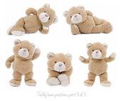 Conjunto de posiciones de oso de peluche — Foto de Stock