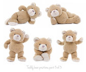 Set of teddy bear positions — Stock Photo