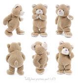 απομονωμένες αρκουδάκι σε διαφορετικές θέσεις ή συναισθήματα — Φωτογραφία Αρχείου