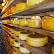 Cheese storage — Stock Photo #26449629