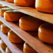 Cheese storage — Stock Photo #26449643