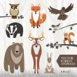 Stock Vector: Forest animals