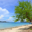 Stock Photo: Samaesarn beach in thailand