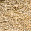 Swirly rice straw — Stock Photo