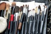 Set di un cosmetico spazzole — Foto Stock