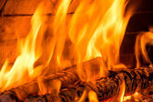 Fire burning a wood — Stock Photo
