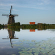 Kinderdijk windmill reflected in river — Stock Photo