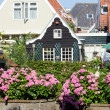 Dutch town — Stock Photo #13428223