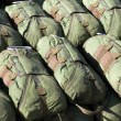 Stock Photo: Paratrooper parachutes