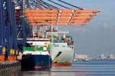 鹿特丹港口的集装箱船 — 图库照片