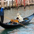 Venice Gondola — Stock Photo #26680653