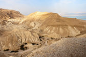 Negev desert — Stock Photo