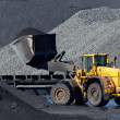 Stock Photo: Shovel coal