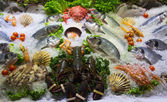 Sea food — Stock Photo
